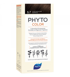 Phyto Coloration Permanente 6 pas cher