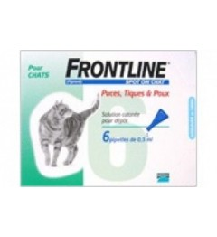 Frontline Spot On Chat 6 pipettes pas cher pas cher