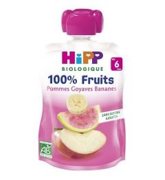 Hipp Gourde Pommes Goyaves Bananes 90 Grammes pas cher