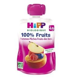 Hipp Gourde Pommes Pêches Fruits des Bois 90 Grammes pas cher