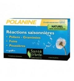 Santé Verte Polanine Allergies Saisonnières 30 Comprimés pas pas cher