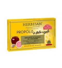Herbesan Propolis Gelée Royale 30 Ampoules de 15Ml